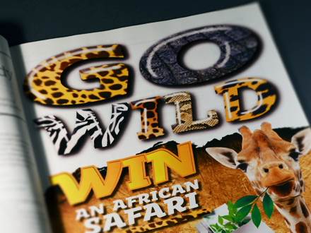 design wild safari africa